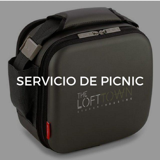 Servicio de Picnic