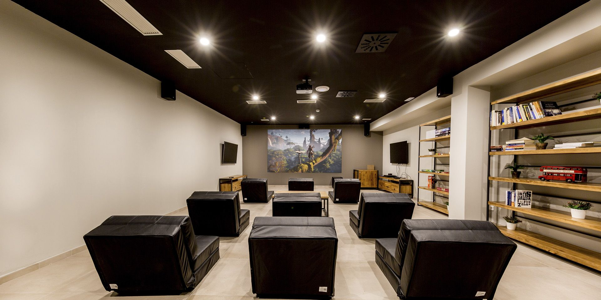 MULTI-PURPOSE ROOMS: CINEMA